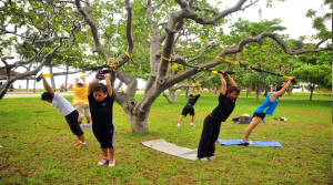 TRX on Tree Limb